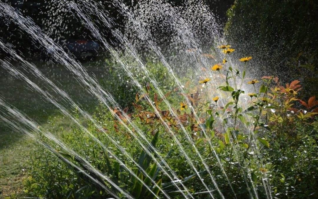 Irrigatiesysteem Tuin: Oplossing voor droogte in je tuin!