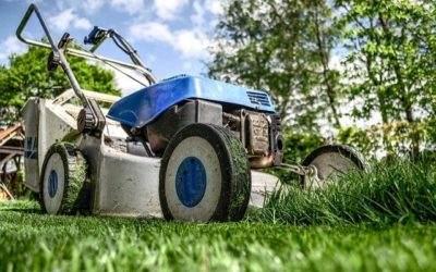 4 Tips voor een mooi gazon met gras