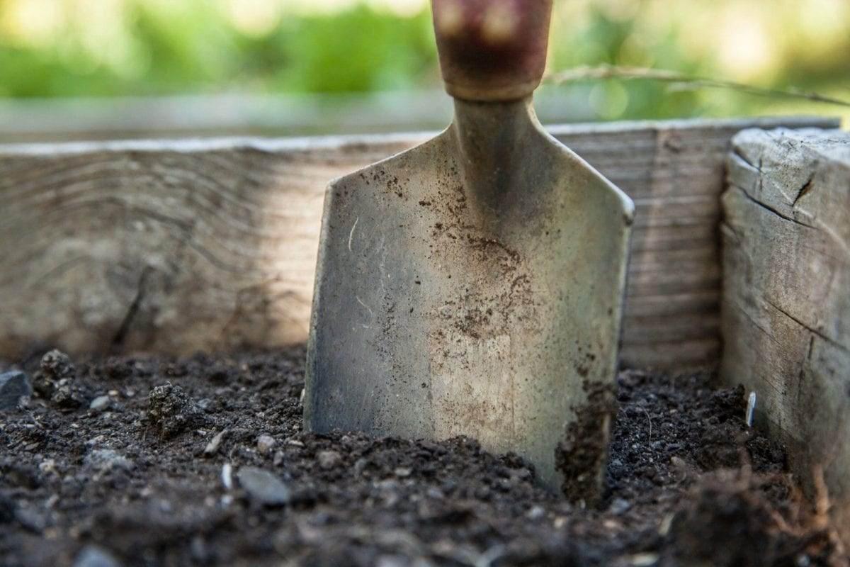 onmisbaar-tuingereedschap-voor-de-tuin